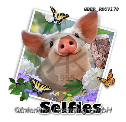 Howard, SELFIES, paintings+++++Piglets selfie,GBHRPROV178,#Selfies#, EVERYDAY