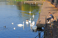 WEATHER PICTURE WALES<br /> Pictured: A young woman takes pictures of the swans in the lake of  Roath Park, Cardiff, South Wales, UK. Wednesday 10 October 2018<br /> Re: Sunshine and high temperatures for the time of the year experienced throughout the UK.