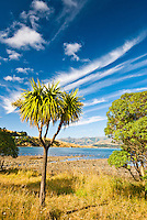 Robinsons Bay near Akaroa - Banks Peninsula, Christchurch, New Zealand