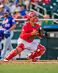 28 February 2019: St. Louis Cardinals catcher Jeremy Martinez in action during a Spring Training game against the New York Mets at Roger Dean Stadium in Jupiter, Florida. The Mets defeated the Cardinals 3-2 in Grapefruit League play. Mandatory Credit: Ed Wolfstein Photo *** RAW (NEF) Image File Available ***