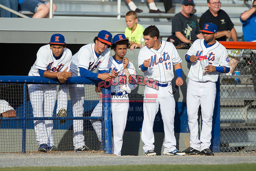 (L-R) Yoryi Nuez (51), Jose Figuera (7), Harol Gonzalez (45), Arnaldo Berrios (13) and Leon Canelon (5) watch the action from the dugout during the game against the Elizabethton Twins at Hunter Wright Stadium on July 9, 2015 in Kingsport, Tennessee.  The Twins defeated the Mets 9-7 in 11 innings. (Brian Westerholt/Four Seam Images)