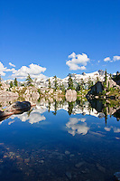 A small tarn or subalpine mountain lake in Strathcona Provincial Park on Vancouver Island, British Columbia, Canada.