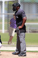 Home plate umpire Javerro January during a game between the Boston Red Sox and Minnesota Twins Instructional League teams at Lee County Sports Complex in Fort Myers, Florida;  October 1, 2010.  Photo By Mike Janes/Four Seam Images
