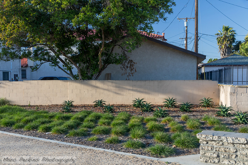 Aloes and grasses planted in a geometric pattern alongside decomposed granite pathways at State Street Park.