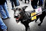 Manifestation contre la réforme des retraites. Samedi 2 octobre 2010. Photo Benjamin Géminel.
