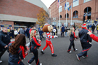 Brutus Buckeye and the Ohio State cheerleaders enter Michigan Stadium prior to the NCAA football game in Ann Arbor on Nov. 28, 2015. Ohio State won 42-13. (Adam Cairns / The Columbus Dispatch)