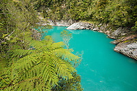 Hokitika Gorge and Tree Ferns, West Coast, New Zealand - stock photo, canvas, fine art print