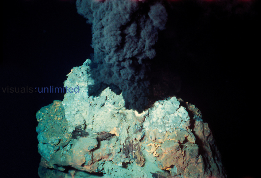 Black Smoker of a hydrothermal deep sea vent
