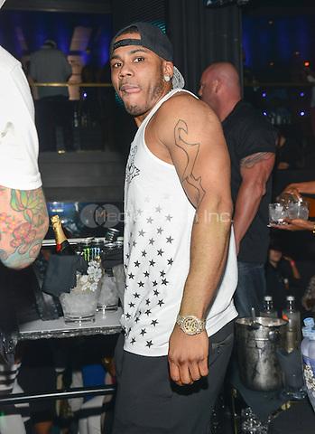 LAS VEGAS, NV - September 15: Nelly hosts Industry Night at Body English Nightclub & Afterhours at the Hard Rock Hotel on September 15, 2013 in Las Vegas, Nevada. © Kabik/ Starlitepics /MediaPunch Inc.