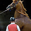 """Cop a Tude with H. Graham Motion before The Grover """"Buddy"""" Delp Memorial Stakes at Delaware Park on 5/23/12"""