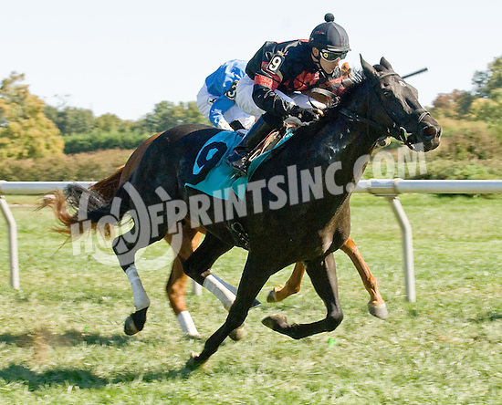 Avilord winning at Delaware Park on 10/13/12