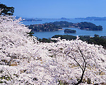 April 01, 2005: File photo showing Matsushima, Miyagi Prefecture, Japan taken in April 01, 2005. Matsushima was renowned for its natural beauty but  devasted by the massive magnitude 9.0 earthquake and subsequent tsunami that struck the eastern coast of Japan on Fraiday 11th March, 2011.....