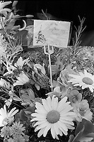 Pix: Copyright Anglia Press Agency/Archived via SWpix.com. The Bamber Killings. August 1985. Murders of Neville and June Bamber, daughter Sheila Caffell and her twin boys. Jeremy Bamber convicted of killings serving life...copyright photograph>>Anglia Press Agency>>07811 267 706>>..Flowers for victims, Nicholas Caffell and Daniel Caffell. no date..ref 0001 neg 18..