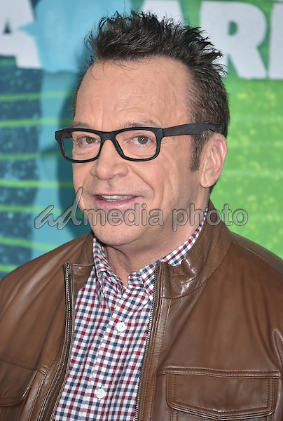 10 June 2015 - Nashville, Tennessee - Tom Arnold. 2015 CMT Music Awards held at Bridgestone Arena. Photo Credit: Laura Farr/AdMedia