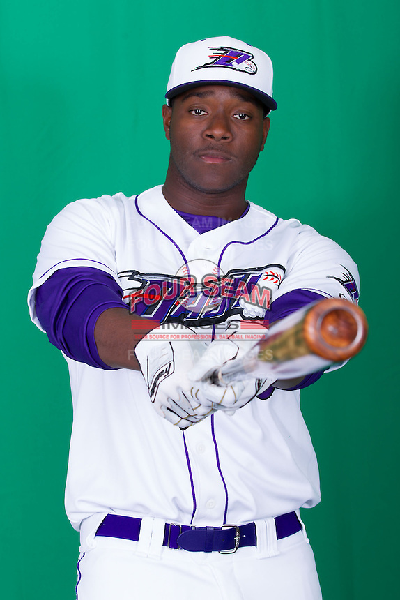 Winston-Salem Dash first baseman Keon Barnum (20) poses for photos during Media Day at BB&T Ballpark on April 1, 2014 in Winston-Salem, North Carolina (Brian Westerholt/Four Seam Images)