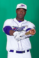 04.01.2014 - MiLB Winston-Salem Photo Day
