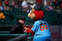 Modesto Nuts manager Denny Hocking (23) talks to 66ers mascot Bernie before a California League game against the Inland Empire 66ers on April 10, 2019 at San Manuel Stadium in San Bernardino, California. Inland Empire defeated Modesto 5-4 in 13 innings. (Zachary Lucy/Four Seam Images)