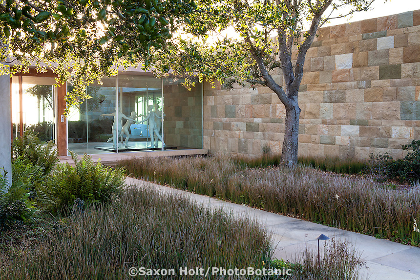 Entry courtyard to modern home andCalifornia native plant garden, Santa Barbara,