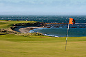 Crail Golfing Society/Balcomie Links, Fife, Scotland. .Picture Credit / Phil Inglis