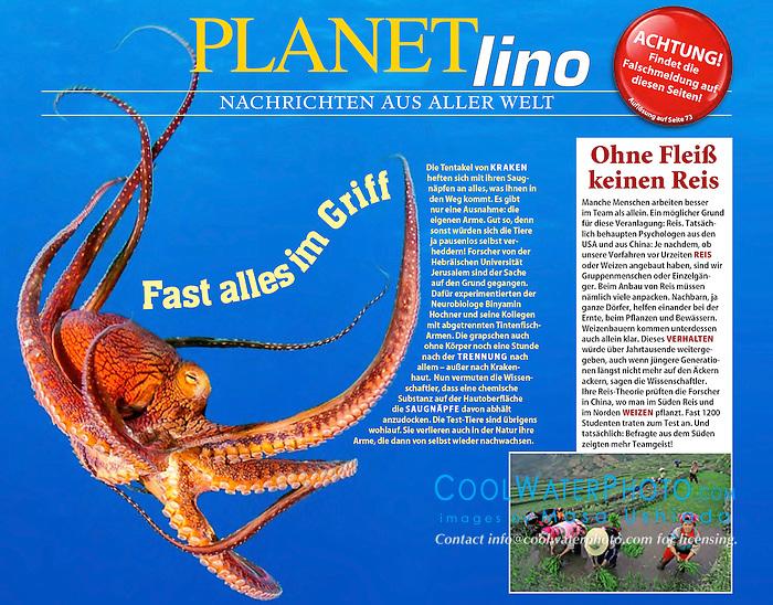 GEO Lino Magazine, July 2014 issue, editorial, Germany