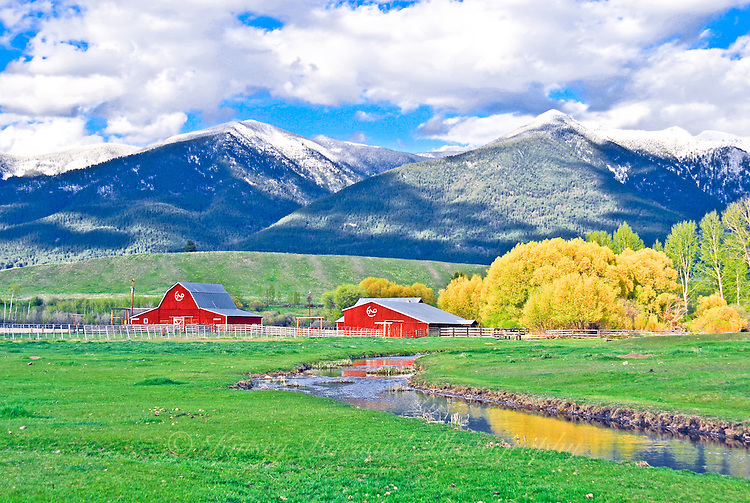 Red barns, green pasture and snow-capped mountains in the Tobacco Valley, Montana