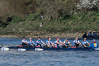 Mortlake/Chiswick, GREATER LONDON. United Kingdom. Sons of the Thames, W.MasC.8+, competing at the 2017 Vesta Veterans Head of the River Race, The Championship Course, Putney to Mortlake on the River Thames.<br /> <br /> <br /> Sunday  26/03/2017<br /> <br /> [Mandatory Credit; Peter SPURRIER/Intersport Images]
