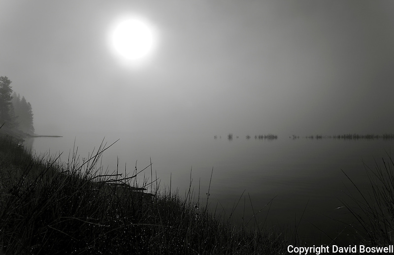 Sunrise over Yellowstone Lake, in the morning fog
