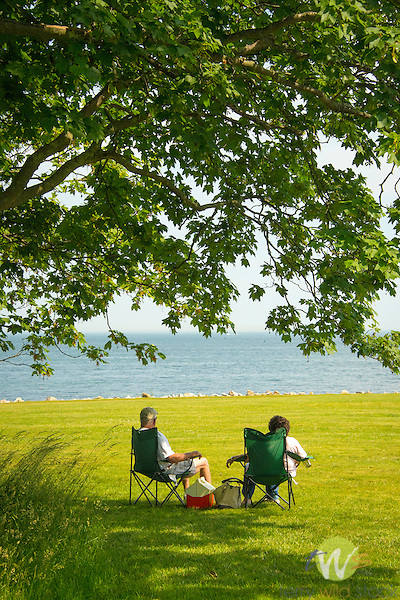 Harkness Memorial State Park. Couple under tree.