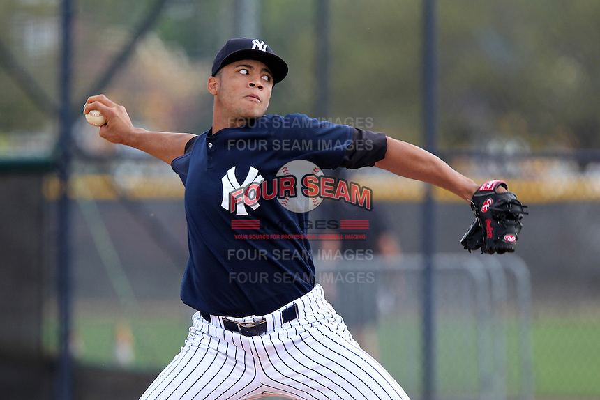 New York Yankees pitcher Andury Acevedo delivers a pitch during a showcase featuring the Dominican Prospect League at the New York Yankees Minor League Complex on March 14, 2012 in Tampa, Florida.  (Mike Janes/Four Seam Images)