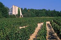 Europe/France/Centre/37/Indre-et-Loire/Env d'Azay-le-Rideau: Vignoble et atelier du sculpteur  Cadler