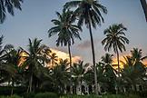 ZANZIBAR, Paje Beach, The Baraza Hotel during Sunset, seen through Palm Trees