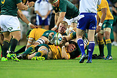 9th September 2017, nib Stadium, Perth, Australia; Supersport Rugby Championship, Australia versus South Africa; Sean McMahon of the Australian Wallabies looks to release the ball in the ruck during play in the first half
