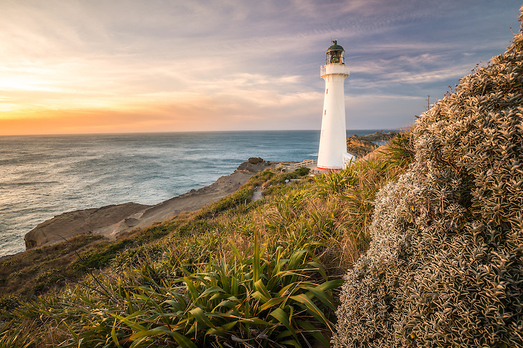 Dawn sunrise view of  Castlepoint lighthouse with flax and native bush in foreground Wairarapa.  canvas prints, fine art print