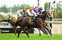 TORONTO, ONTARIO - JUNE 30.#6, Long on Value takes the Breeders Cup Challenge Grade I Highlander Stakes for Owners Madaket Stables LLC, Ten Strike Racing, and Steve Layman; Florent Geroux aboard for Trainer Brad Cox during the 159th Queen's Plate Festival at Woodbine Racetrack in Toronto, Ontario, Canada. (Photo by Kristin Leason/Eclipse Sportswire/Getty Images)