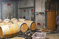 Domaine Entretan, J-C and D Plantade in Roubia. Minervois. Languedoc. Barrel cellar. Concrete fermentation and storage vats. France. Europe.