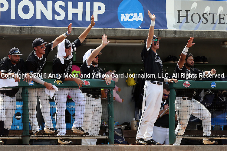 04 June 2016: Players on the Nova Southeastern bench waive to a teammate who had gotten a hit. The Nova Southeastern University Sharks played the Millersville University Marauders in Game 14 of the 2016 NCAA Division II College World Series  at Coleman Field at the USA Baseball National Training Complex in Cary, North Carolina. Nova Southeastern won the game 8-6 and clinched the NCAA Division II Baseball Championship.