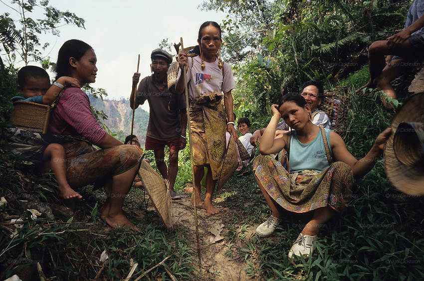 DAYAK, MALAYSIA. Sarawak, Borneo, South East Asia. Dayak, 'Kenyah', woman, child, group walking through forest. Tropical rainforest and one of the world's richest, oldest eco-systems, flora and fauna, under threat from development, logging and deforestation. Home to indigenous Dayak native tribal peoples, farming by slash and burn cultivation, fishing and hunting wild boar. Home to the Penan, traditional nomadic hunter-gatherers, of whom only one thousand survive, eating roots, and hunting wild animals with blowpipes. Animists, Christians, they still practice traditional medicine from herbs and plants. Native people have mounted protests and blockades against logging concessions, many have been arrested and imprisoned.