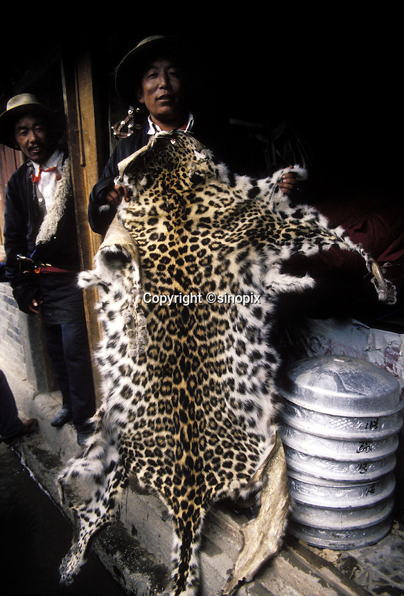 A Tibetan man shows a snow leopard pelt at a market in Zoige, Sichuan.