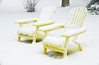 Muskoka chairs in winter<br />