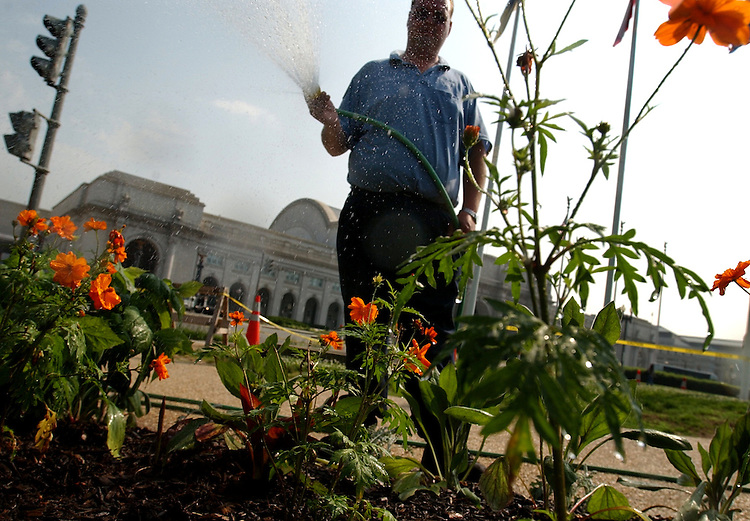 David Ellis of the Architect of the Capitol, Gardening Division, waters Cosmos and othre flowers, near Union Station, Monday.  He put 500 gallons on this one bed in order to combat the heat.