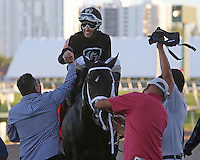 HALLANDALE BEACH, FL - FEBRUARY 11: Sharp Azteca (KY) #7 with jockey Edgar Zayas celebrates before going to the winners circle after winning the Hardacre Mile Gulfstream Park Handicap GII at Gulfstream Park on February 11, 2017 in Hallandale Beach, Florida. (Photo by Liz Lamont/Eclipse Sportswire/Getty Images)