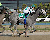 Quantum Miss captures The Cicada Grade III at Aqueduct, New York....3/19/11....Ridden by Cornelio Velasquez....Coax Liberty finished second ridden by Eurico Rosa Da Silva