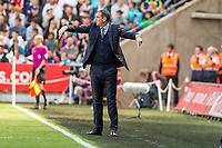 Manager of Swansea City, Paul Clement reacts during the Premier League match between Swansea City and West Bromwich Albion at The Liberty Stadium, Swansea, Wales, UK. Sunday 21 May 2017 (Photo by Athena Pictures/Getty Images)