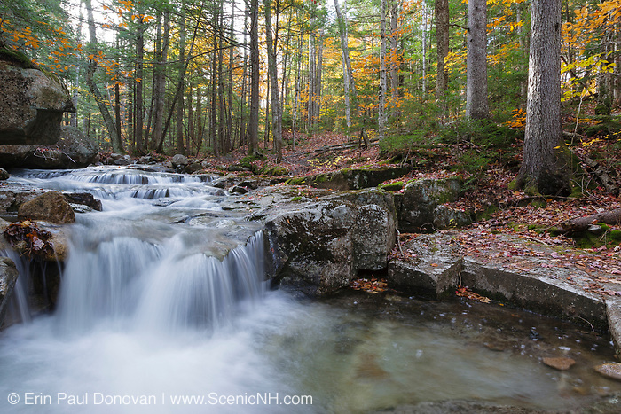 A small cascade on Twin Brook in Albany, New Hampshire during the autumn season. The Bolles Trail travels near this scenic brook.