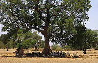 Villagers gathering under tree for shade