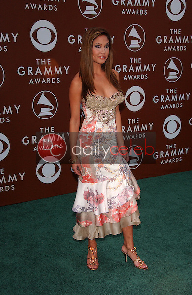 Vanessa Minnillo<br />at the 48th Annual GRAMMY Awards. Staples Center, Los Angeles, CA. 02-08-06<br />Dave Edwards/DailyCeleb.com 818-249-4998