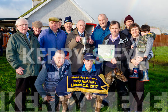 'Amazing Style' won the Moss Joe Browne sponsored, Dog Trail Stake owned by Pat McCarthy&John O'Keeffe and trained by John Kelliher last Sunday at Lixnaw coursing.
