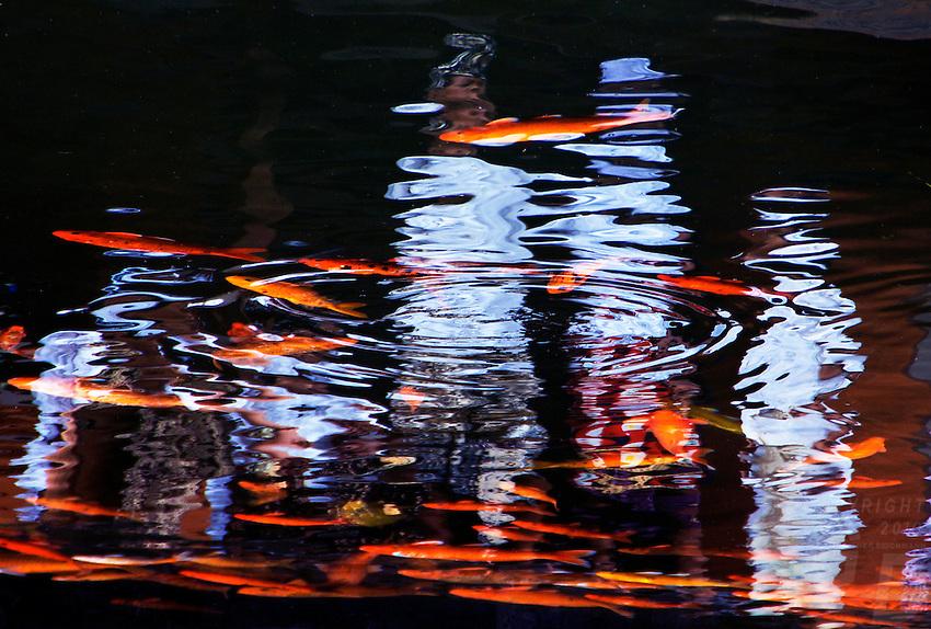 Reflections at Tirta Empul Temple,Bali