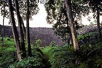 Pathway leading to Piilanihale Heiau, the largest luakini type (human sacrifice) heiau in Hawaii, Kahanu Garden, Hana