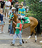 Donttangowithmango before The Go For Wand Stakes at Delaware Park on 6/11/12